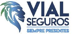 Logo web vialseguros
